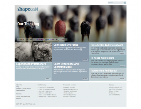 Website Design for Shapecast